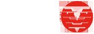 DSM Demolition Logo